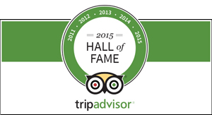 TripAdvisor HallofFame for Cayman Islands Horseback Riding Tours