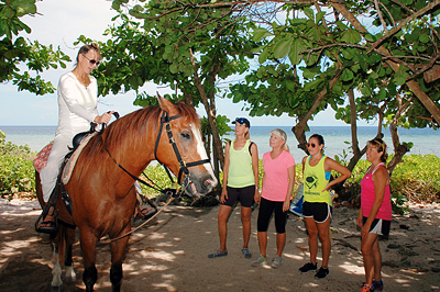 cayman horseback riding check in at pampered ponies