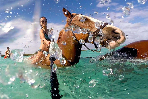 horseback riding and swimming in Grand Cayman